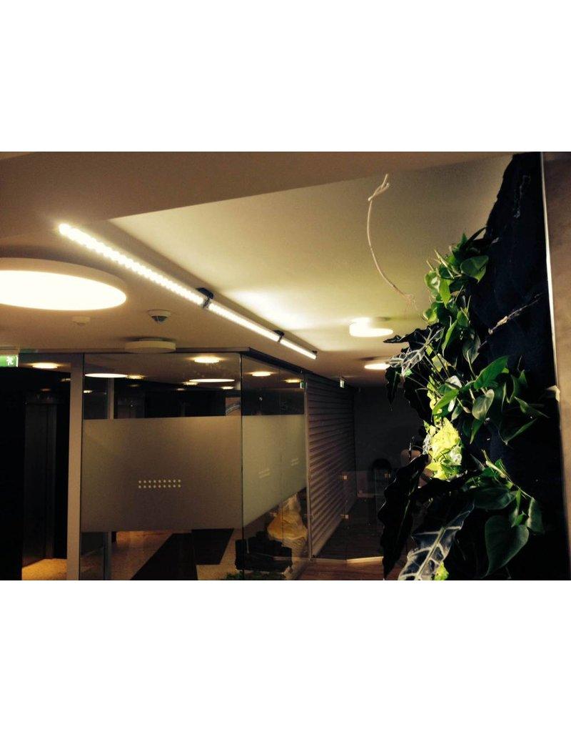 Parus Plant Light Living wall LED voor groene wanden