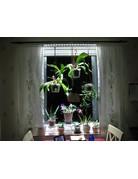 Parus Plant Light Vensterbank of kantoor verlichting tot 600mm