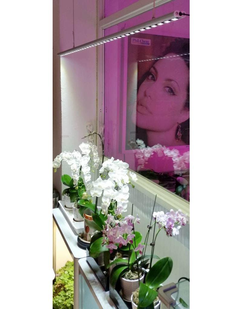 Parus Plant Light Window Silk or Office lighting 600mm