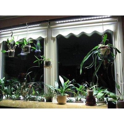 Parus Plant Light Vensterbank of kantoor verlichting tot 900mm
