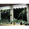 Parus Plant Light Vensterbank of kantoor verlichting tot 1500mm