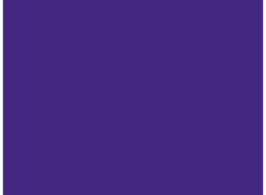 Speelkleed vinyl | Posh Purple