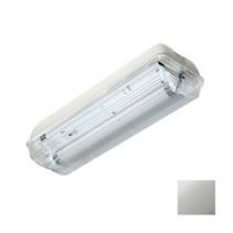 Guard II LED T5 Buis 30cm 4W, 340 lumen, met nood (170 lumen, 2W),  3000K, licht-grijs/opaal