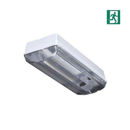 4MLUX Titan LED Pro-line 5W, 600 lumen, met nood (200 lumen, 2W), met of zonder pictogramset, 3000K, licht-grijs/helder