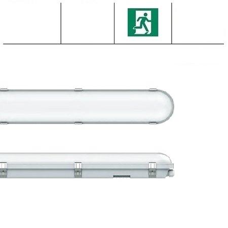 EM-Kosnic Congo Pro LED 2x1200mm, 36W, met nood, 3950-4350 lumen, 3000-6000K CCT met instelbare LED kleur, met RVS clipsen
