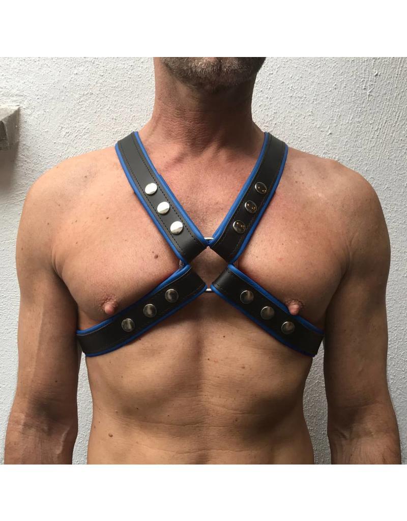 RoB 4-Strap Harness schwarz mit blauen Piping
