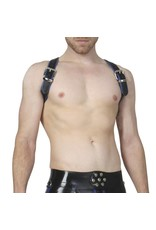 RoB Shoulder Harness Blue Piping, buckle