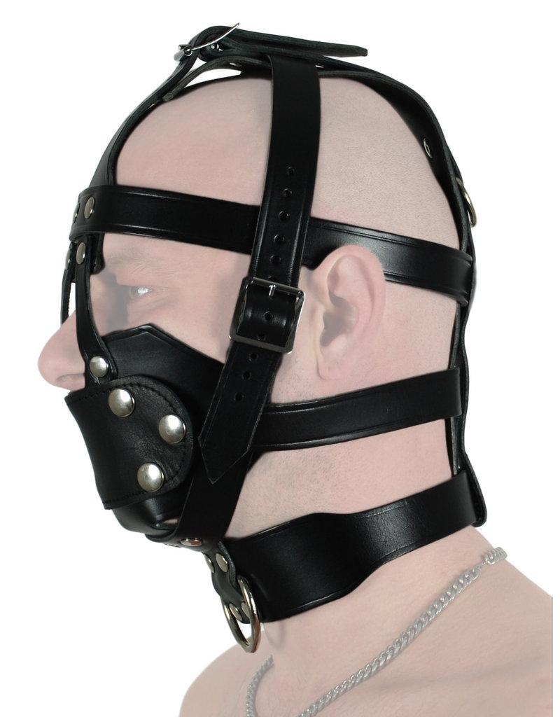 RoB Leren hoofdharnas