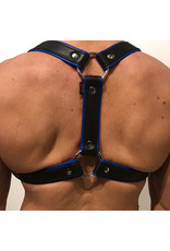RoB Phalanx harness black with blue piping