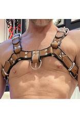 RoB H-Front Harness braun mit schwarzen Piping