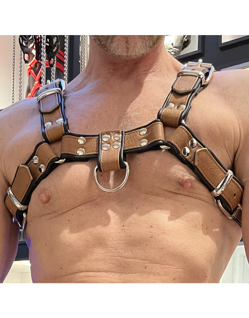 RoB H-Front Harness brown with black piping