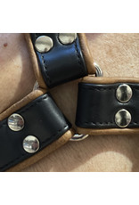 RoB H-Front Harness black with brown piping
