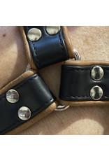 RoB H-Front Harness schwarz mit braunen Piping