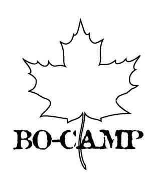 Bo-Camp Bocamp reistandenborstel