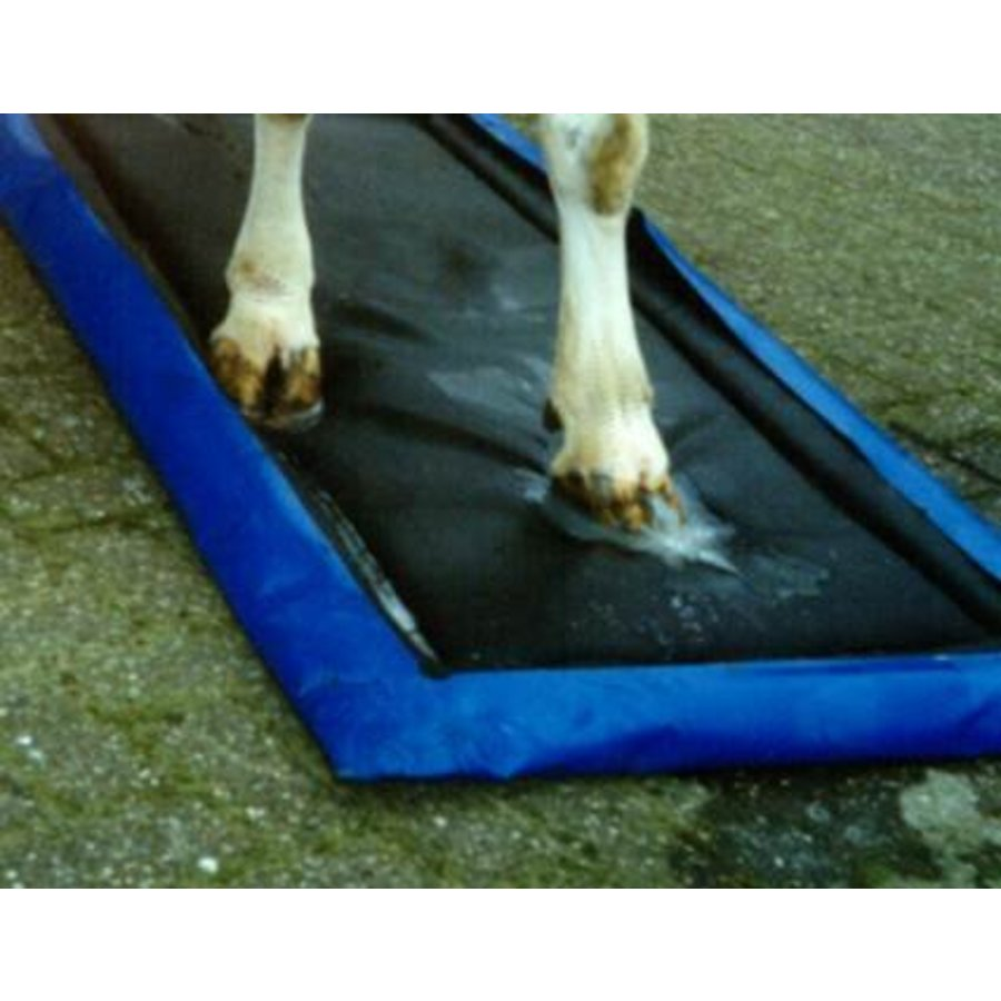 Disinfection mat with collection cover-2