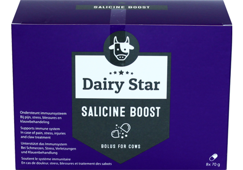 DairyStar Salicine Bolus (8x 70g per doosje)