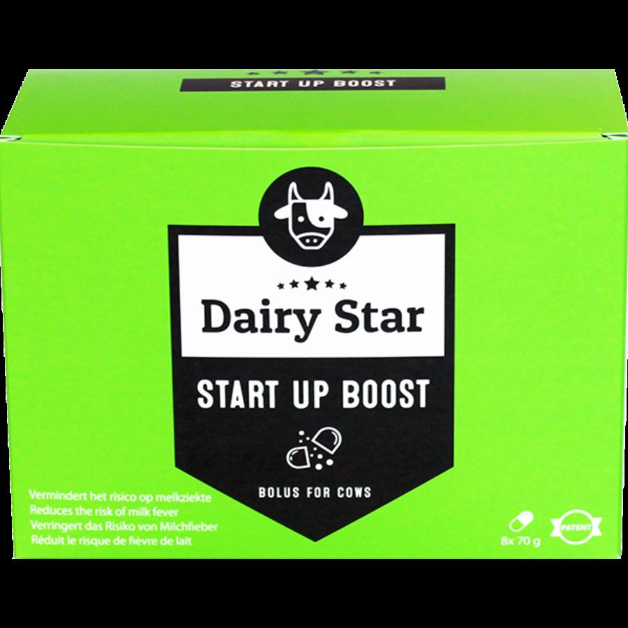 DairyStar Start up Bolus (8x 70g/box)-1