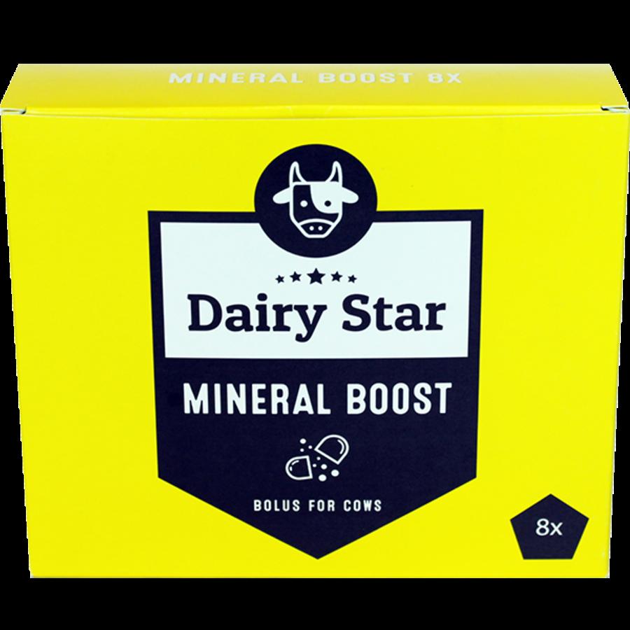 DairyStar Mineral Boost Bolus (8x110 g/box)-1