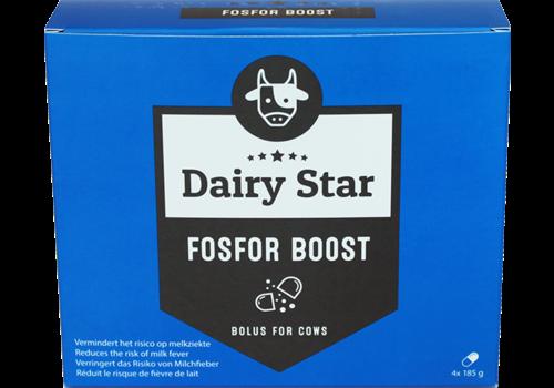 DairyStar Fosfor Boost Bolus (4x185 g/doosje)