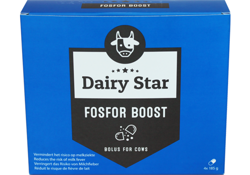 DairyStar Phosphorus Boost Bolus (4x185 g per box)