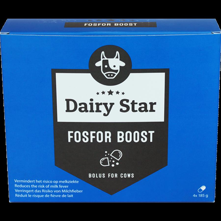 DairyStar Fosfor Boost Bolus (4x 185 g/doosje)-1