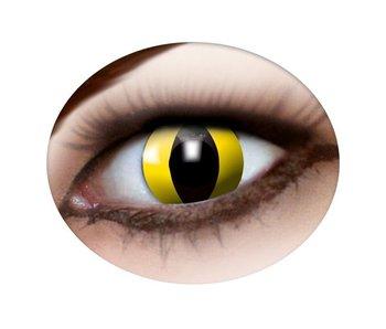 Cat eye lenses yellow
