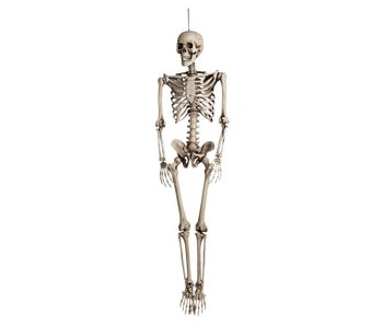 Decoration Skeleton (160cm)