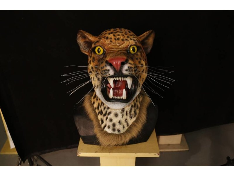 Luipaard masker Deluxe