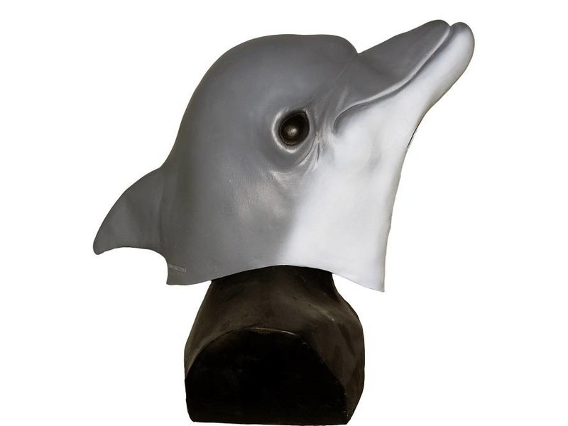 Dolfijnmasker