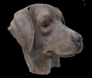 hondenmasker 'bruine labrador'