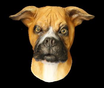 Hondenmasker 'Boxer'