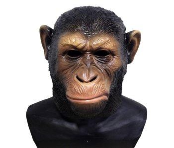 Monkey mask 'Ceasar'