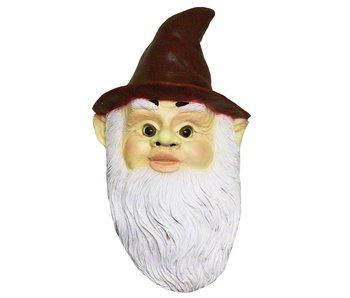Gnome mask