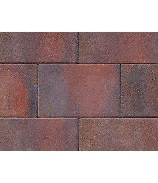 Tremico Oud-Bont 20x30x6 cm
