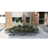 Stone Walling Grijs/Zwart 18x42x8