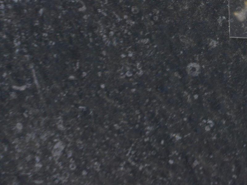CE Spectra Dark Grey keramische buitentegel 60x60x3 cm