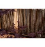 Bamboescherm in Douglaslijst