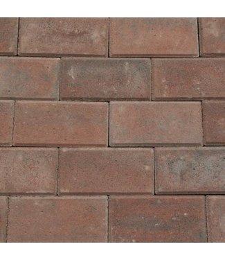 Betonklinker BSS Rood genuanceerd met deklaag 21x10,5x8 cm