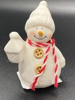 Hof van Sellingen Sneeuwpop met lange neus
