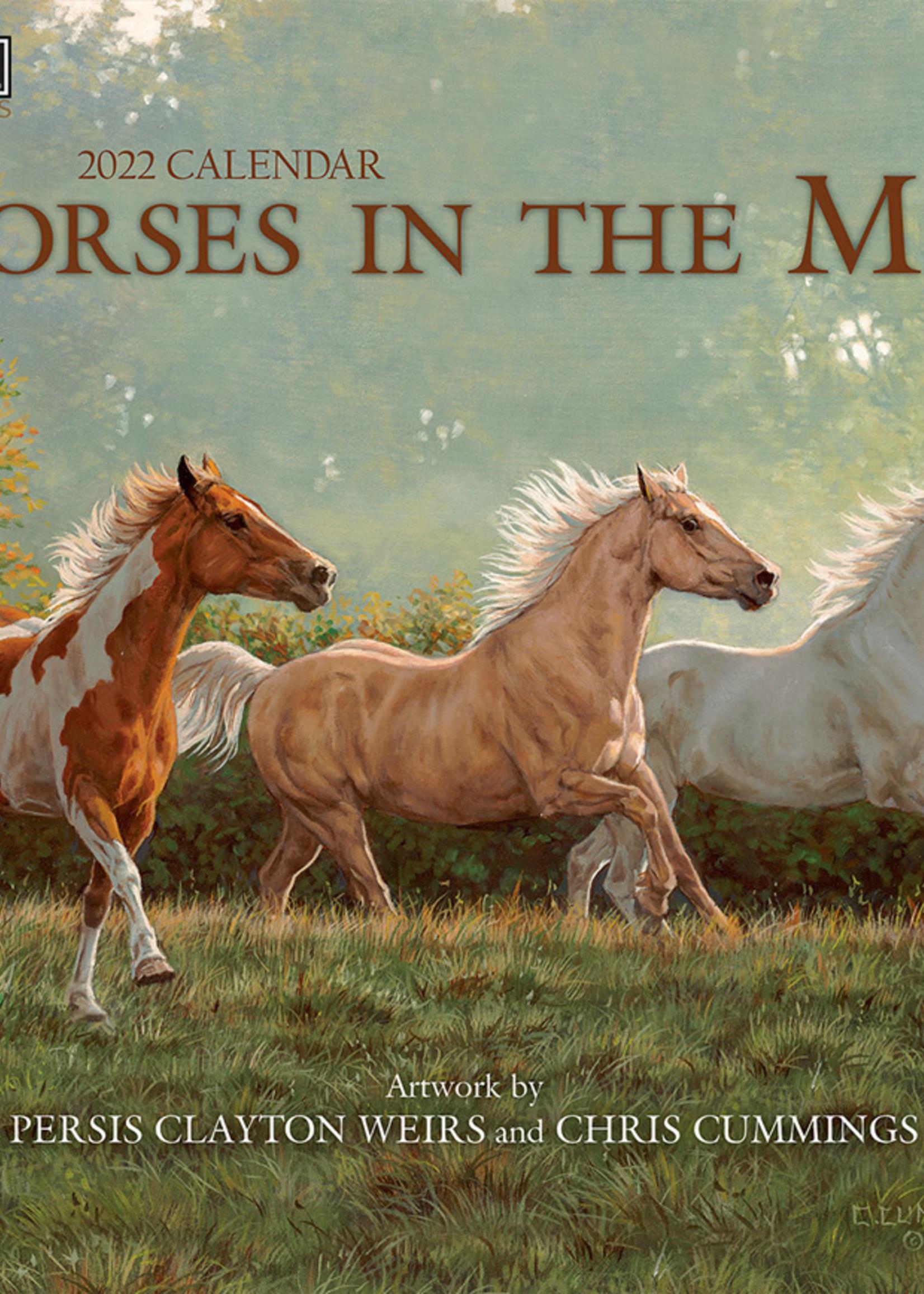 Horses in the Mist Calendar 2022