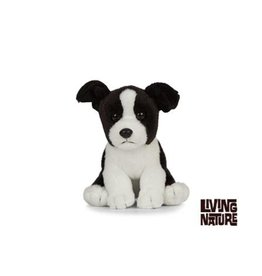 Living Nature Border Collie Puppy Knuffel