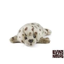 Zeehond Pup, Living Nature