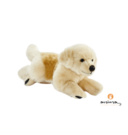 Anima Golden Retriever Knuffel, 42 cm lang