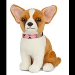 Chihuahua Knuffel