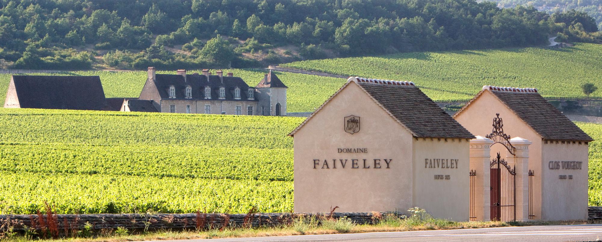 Domaine Faiveley Vineyards