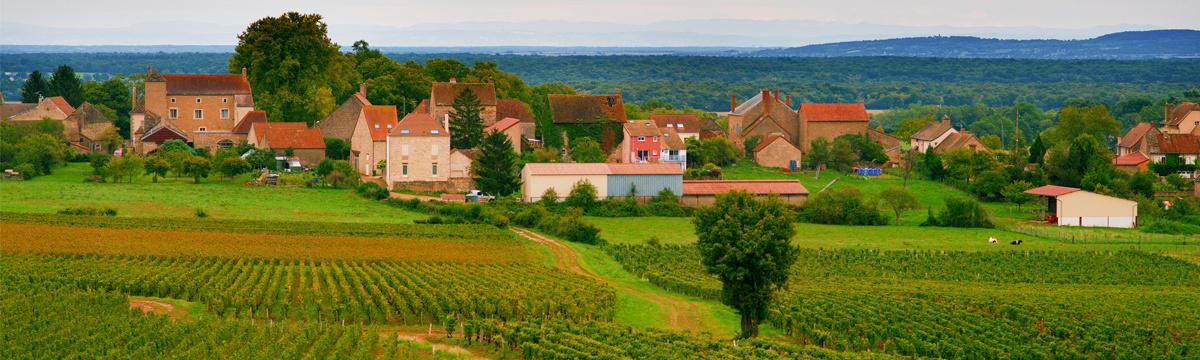 Domaine Berthenet Montagny Village