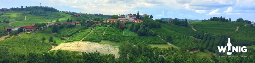 Exclusieve wijnen: de vier grote B's