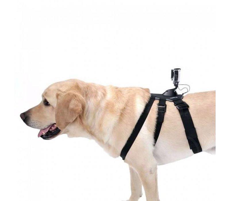 Fetch Honden Harnas voor GoPro