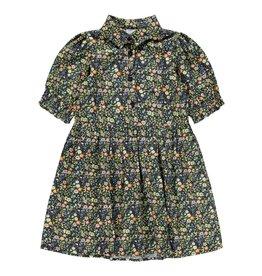 Name-it NKFDAFONA SS DRESS