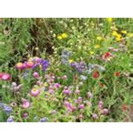 A4d85 Mulberrypapier met bloemzaadjes, 50 vel